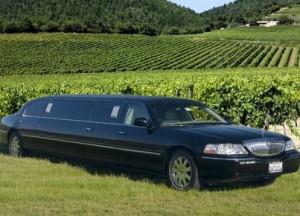 Wine-Tours-Limo