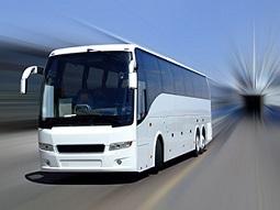 55 passengers coach bus